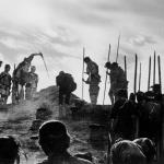 Seven Samurai (Kurosawa, 1954)